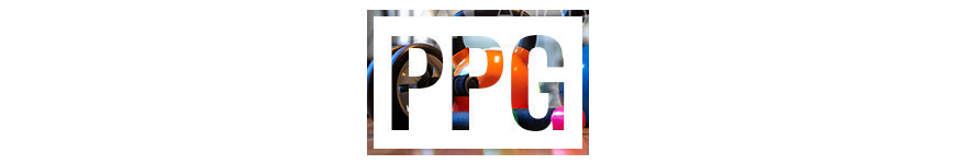 Fitness / PPG